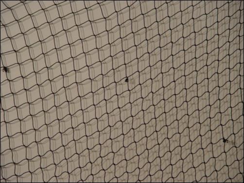 Black decorative fish netting for Decorative fishing net