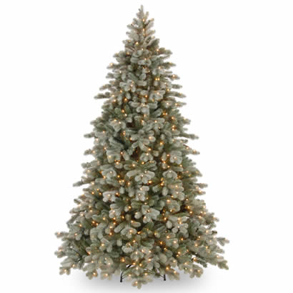 7 1/2 Ft. Frosted Colorado Spruce Christmas Tree w/ 750 Clear Lights