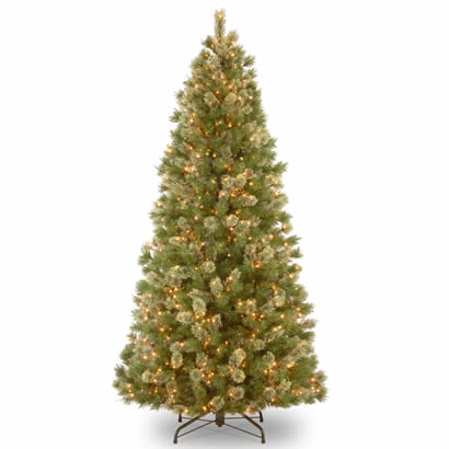 9 Ft. Wispy Willow Grande Christmas Tree with 900 Clear Lights