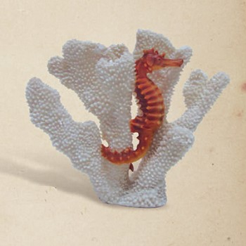 Seahorse in Coral Sculpture
