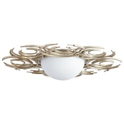 Silver Ceiling Mount Light
