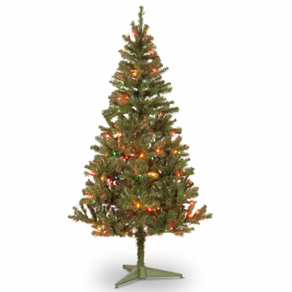 6 Ft. Canadian Grande Fir Wrapped Christmas Tree w/ 200 Multi Lights
