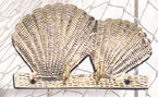 Brass Sea Shells Key Hanger
