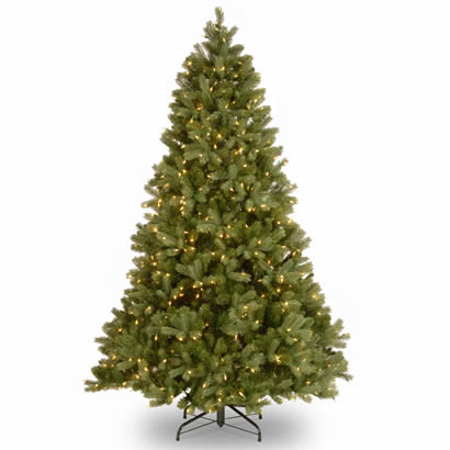7 Ft. Feel-Real Bayberry Spruce Christmas Tree w/ 700 Clear Lights