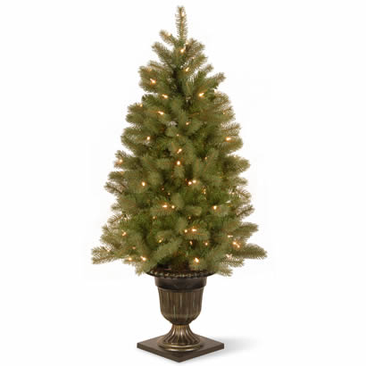 4 Ft. Douglas Fir Entrance Christmas Tree w/ 100 Clear Lights & Pot