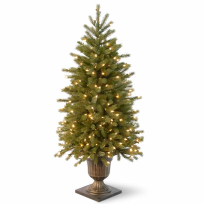 4 Ft. Fraser Fir Entrance Christmas Tree w/ 100 Clear Lights