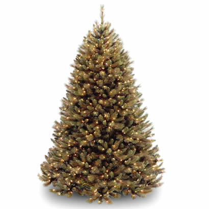 7 Ft. Rocky Ridge Pine Hinged Christmas Tree with 650 Clear Lights