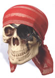 Pirate Skull w/ Bandana