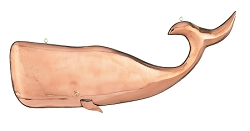 Polished Copper Hanging Whale