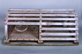 Authentic Used Lobster Trap