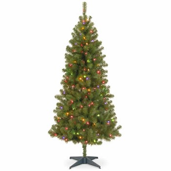 7 Ft. Canadian Grande Fir Wrapped Christmas Tree w/ 300 Multi Lights