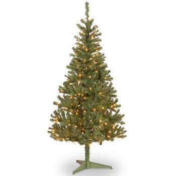 6 Ft. Canadian Grande Fir Wrapped Christmas Tree w/ 200 Clear Lights