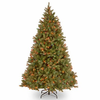 7 Ft. Feel-Real Bayberry Spruce Christmas Tree with 700 Multi Lights